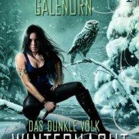 Das dunkle Volk: Winternacht: Roman von Yasmine Galenorn. Sexy, spannend, suchtgefährdend - der dritte Teil der Das dunkle Volk-Reihe von Yasmine Galenorn ...