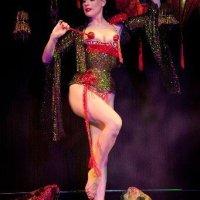 Dita von Teese Foto-Nachdruck. Poster. Femme Totale: Dita Von Teese. Burlesque Star. Erlebnisgeschenke-Info-Shop-021.de: Dita Von Teese Kostüme und Accessoires